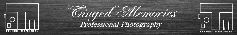 Tinged Memories Professional Photography