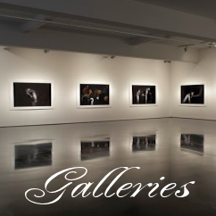 Tinged memories Galleries